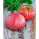 Plant de tomate Rose Brandywine